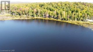 Photo 5: 300 HAMILTON LAKE Road in South River: Vacant Land for sale : MLS®# 40159931