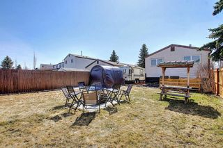 Photo 31: 136 Abingdon Way NE in Calgary: Abbeydale Detached for sale : MLS®# A1097346