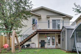 Photo 39: 144 SHAWINIGAN Drive SW in Calgary: Shawnessy Detached for sale : MLS®# A1131377