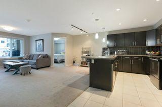Photo 16: 101 1031 173 Street SW in Edmonton: Zone 56 Condo for sale : MLS®# E4223947