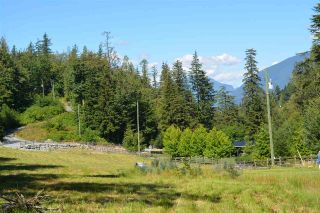 "Photo 15: 6428 HYFIELD Road in Abbotsford: Sumas Mountain Land for sale in ""SUMAS MOUNTAIN"" : MLS®# R2462015"