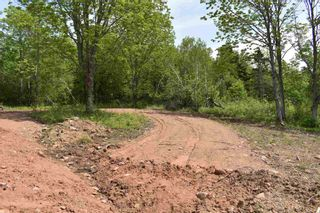 Photo 3: Lot Pickup Road in Clementsport: 400-Annapolis County Vacant Land for sale (Annapolis Valley)  : MLS®# 202101029