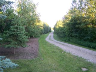 Photo 17:  in Sandwith: Acreage for sale (Round Hill Rm No. 467)