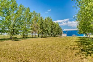 Photo 42: 251046 Rge Rd 263: Rural Wheatland County Residential Land for sale : MLS®# A1117285