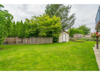 """Photo 21: 5089 214A Street in Langley: Murrayville House for sale in """"Murrayville"""" : MLS®# R2472485"""