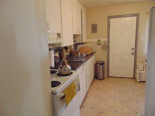 Photo 27: 11306 109A Avenue in Edmonton: Zone 08 House Triplex for sale : MLS®# E4237710