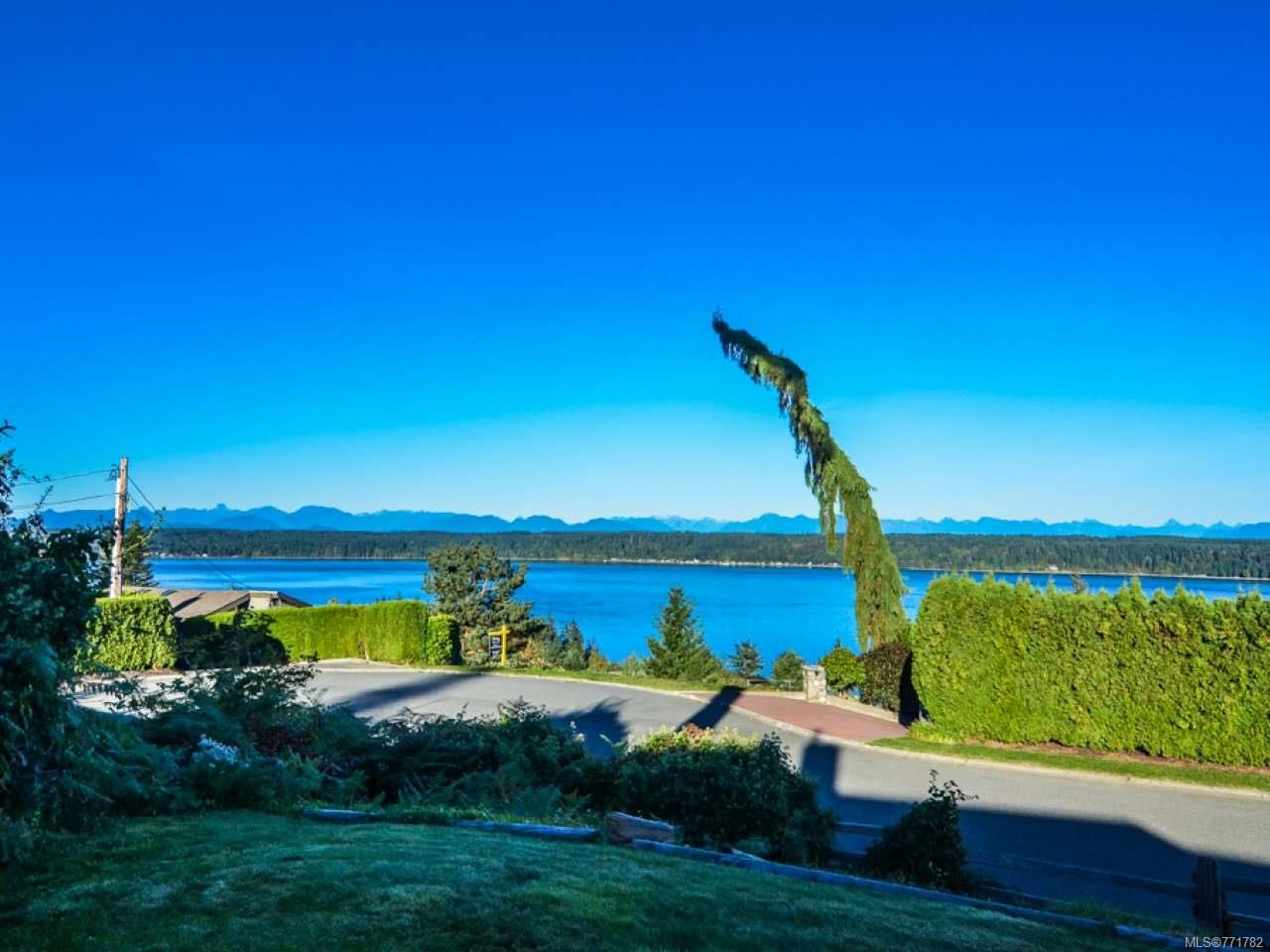 Photo 48: Photos: 451 S McLean St in CAMPBELL RIVER: CR Campbell River Central House for sale (Campbell River)  : MLS®# 771782