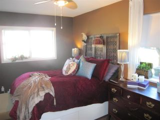 Photo 12: 38806 NICOMEN ISLAND TRUNK Road in Mission: Dewdney Deroche House for sale : MLS®# R2041213