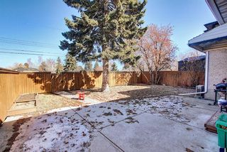 Photo 45: 56 Langton Drive SW in Calgary: North Glenmore Park Detached for sale : MLS®# A1081940