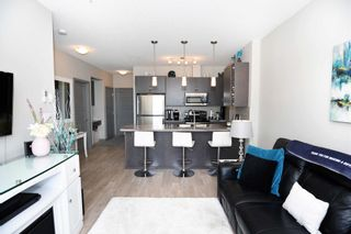 Photo 15: 404 1004 ROSENTHAL Boulevard in Edmonton: Zone 58 Condo for sale : MLS®# E4250933
