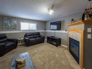 Photo 21: 139 Springs Crescent SE: Airdrie Detached for sale : MLS®# A1065825