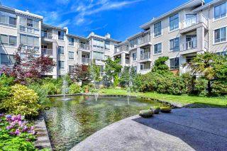 """Photo 1: 409 360 E 36 Avenue in Vancouver: Main Condo for sale in """"Magnolia Gate"""" (Vancouver East)  : MLS®# R2286831"""
