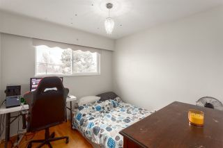 Photo 10: 2557 E 24TH AVENUE in Vancouver: Renfrew Heights House for sale (Vancouver East)  : MLS®# R2252626