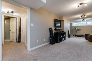 Photo 36: 22 BALMORAL Drive: St. Albert House for sale : MLS®# E4239500
