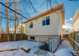 Photo 32: 14 Royal Birch Grove NW in Calgary: Royal Oak Detached for sale : MLS®# A1073749