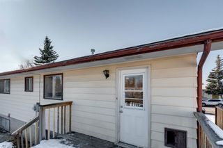 Photo 42: 3812 49 Street NE in Calgary: Whitehorn Detached for sale : MLS®# A1054455