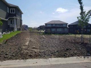 Photo 3: 3043 58 Avenue NE: Rural Leduc County Rural Land/Vacant Lot for sale : MLS®# E4252884