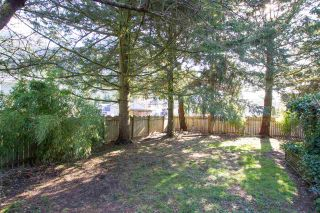 Photo 10: 38108 CHESTNUT Avenue in Squamish: Valleycliffe House for sale : MLS®# R2557673