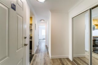 """Photo 3: 105 428 AGNES Street in New Westminster: Downtown NW Condo for sale in """"SHANLEY MANOR"""" : MLS®# R2408805"""