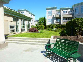Photo 6: 115 8975 JONES Road in Richmond: Brighouse South Condo for sale : MLS®# R2170638