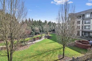 """Photo 13: 211 8880 202 Street in Langley: Walnut Grove Condo for sale in """"The Residence"""" : MLS®# R2444282"""