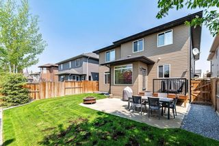 Photo 48: 114 Panatella Close NW in Calgary: Panorama Hills Detached for sale : MLS®# A1094041