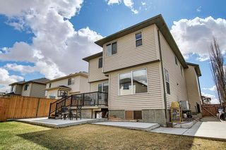 Photo 50: 260 WILLOWMERE Close: Chestermere Detached for sale : MLS®# A1102778