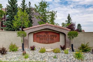 Photo 13: 14 2314 Edenwold Heights NW in Calgary: Edgemont Apartment for sale : MLS®# A1132742