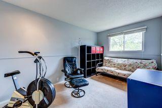 Photo 23: 3613 44 Avenue in Edmonton: Zone 29 House for sale : MLS®# E4246393