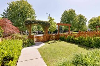 """Photo 28: 21145 80 Avenue in Langley: Willoughby Heights Condo for sale in """"YORKVILLE"""" : MLS®# R2597034"""