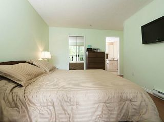 Photo 9: # 213 2551 PARKVIEW LN in Port Coquitlam: Central Pt Coquitlam Condo for sale : MLS®# V1012926