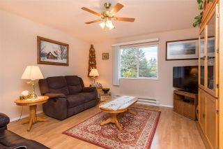 Photo 31: 42717 WALNUT Avenue: Yarrow House for sale : MLS®# R2512412