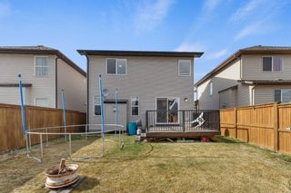 Photo 34: 1020 Brightoncrest Green SE in Calgary: New Brighton Detached for sale : MLS®# A1097905