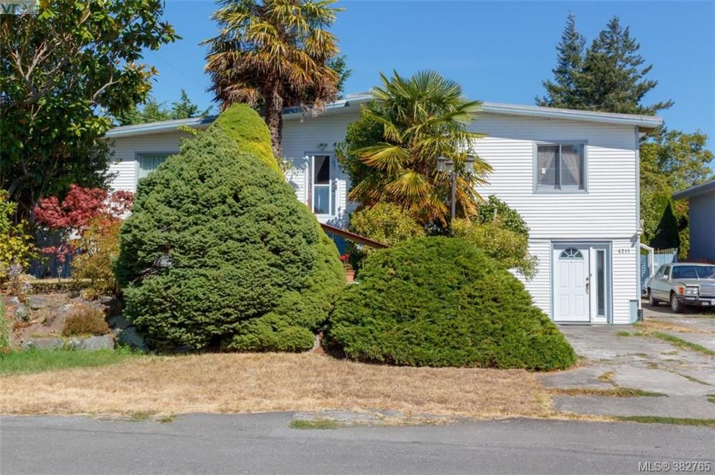 Main Photo: 4211 Belvedere Rd in VICTORIA: SE Lake Hill House for sale (Saanich East)  : MLS®# 769195