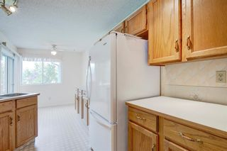 Photo 5: 58 Shawinigan Drive SW in Calgary: Shawnessy Detached for sale : MLS®# A1153075