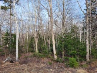 Photo 2: Lot Lighthouse Road in Bay View: 401-Digby County Vacant Land for sale (Annapolis Valley)  : MLS®# 202106948