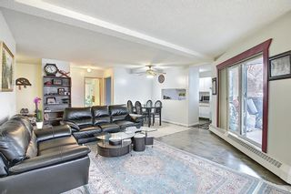 Photo 9: 110 11 DOVER Point SE in Calgary: Dover Apartment for sale : MLS®# A1118273