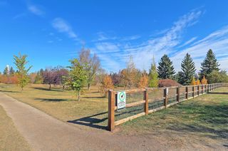 Photo 42: 301 3704 15A Street SW in Calgary: Altadore Apartment for sale : MLS®# A1153007