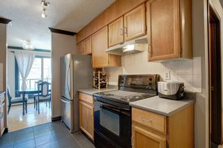 Photo 10: 203 917 18 Avenue SW in Calgary: Lower Mount Royal Apartment for sale : MLS®# A1099255