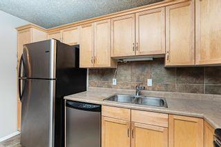 Photo 17: 215 279 SUDER GREENS Drive in Edmonton: Zone 58 Condo for sale : MLS®# E4250469