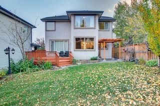 Photo 46: 163 Springbluff Heights SW in Calgary: Springbank Hill Detached for sale : MLS®# A1153228