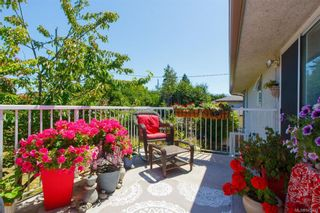 Photo 23: 2927 Ilene Terr in : SE Camosun House for sale (Saanich East)  : MLS®# 845333