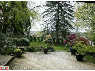 Photo 9: 2217 OLYMPIA Place in Abbotsford: Abbotsford East House for sale : MLS®# F1010291