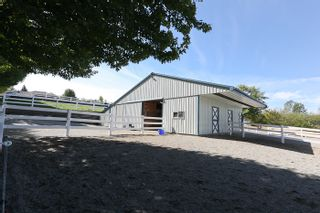 Photo 17: 20486 1ST Avenue in Langley: Campbell Valley House for sale : MLS®# F1114213