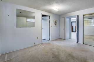 Photo 25: 7316 7 Street NW in Calgary: Huntington Hills Detached for sale : MLS®# A1083034