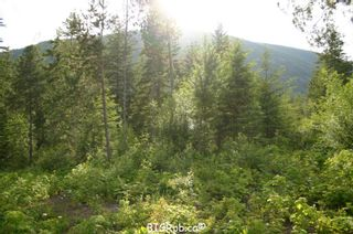 Photo 12: 190 SW Christison Road in Salmon Arm: Gleneden Vacant Land for sale : MLS®# 10118444