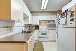 """Photo 6: 303 22351 ST ANNE Avenue in Maple Ridge: West Central Condo for sale in """"Downtown"""" : MLS®# R2080492"""