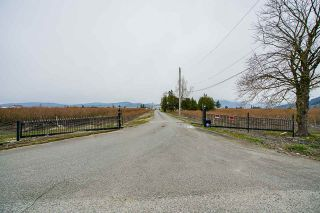 Photo 5: 34659 TOWNSHIPLINE Road in Abbotsford: Matsqui House for sale : MLS®# R2560847