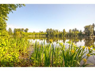 Photo 20: 1123 MILFORD AV in Coquitlam: Central Coquitlam House for sale : MLS®# V1124385