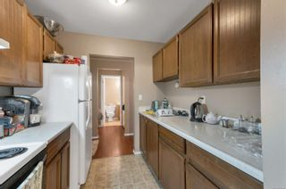 Photo 9: 210 377 Dogwood St in : CR Campbell River Central Condo for sale (Campbell River)  : MLS®# 886108